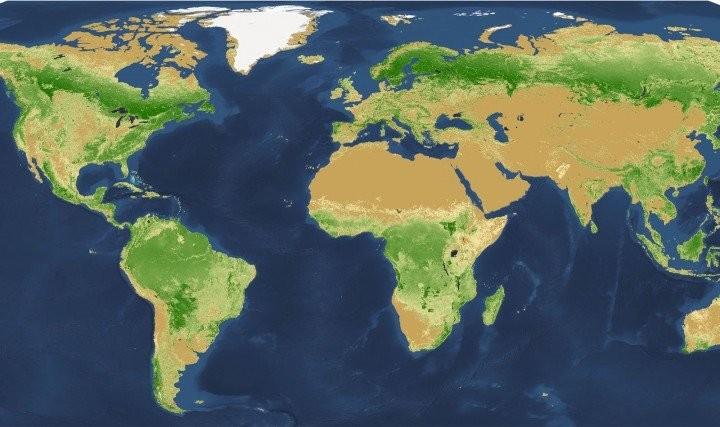 Mapa elaborado pelos pesquisadores mostra a distribuição exata da vegetação pelo planeta (Foto: Reprodução)