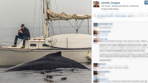 Viciado no smartphone, homem nem percebeu baleia ao lado de barco (Foto: Reprodução/ Instagram/Emith_images)