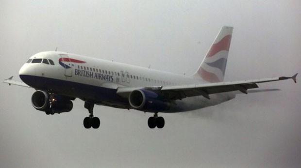 Choque ocorreu na parte da frente de um Airbus A320 da British Airways (Foto: BBC)