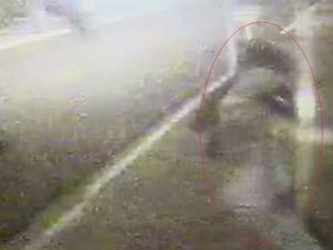 Câmeras flagraram o criminoso tentando entrar na casa (Foto: Imagens cedidas/ Circuito de Segurança)