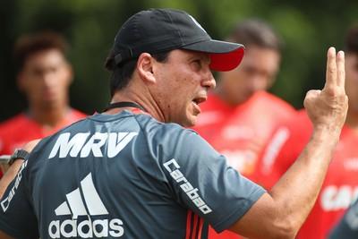 Zé Ricardo Flamengo (Foto: Gilvan de Souza / Divulgação Flamengo)