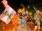 Duas escolas participam do desfile de carnaval em São João da Boa Vista