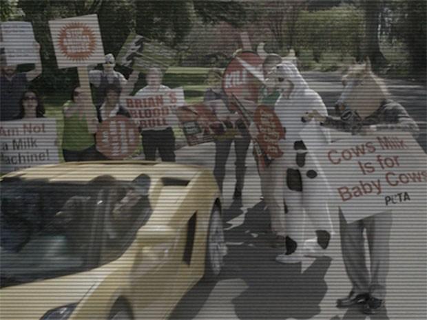 Brian Benson é atacado por ativistas (Foto: Fato na Rede)