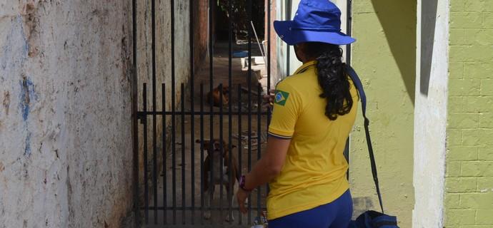 Durante o dia Elisângela é craque ao driblar os cachorros (Foto: Bruno Willemon/GloboEsporte.com)