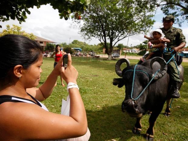 Turista registra momento do passeio em Soure: policial montado em um búfalo. (Foto: Sidney Oliveira/Agência Pará )