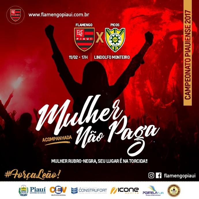 Promoção ingressos Flamengo-PI (Foto: Divulgação)