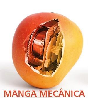 Manga Mecânica  (Foto: GloboEsporte.com)
