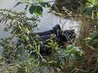 Funcionária de prefeitura morre após carro cair no rio Itajaí Mirim