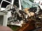 Motorista morre após bater veículo em uma árvore em estrada vicinal