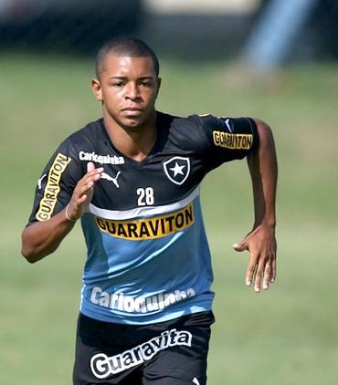 Fabiano Botafogo (Foto: Reprodução / Site oficial Botafogo)