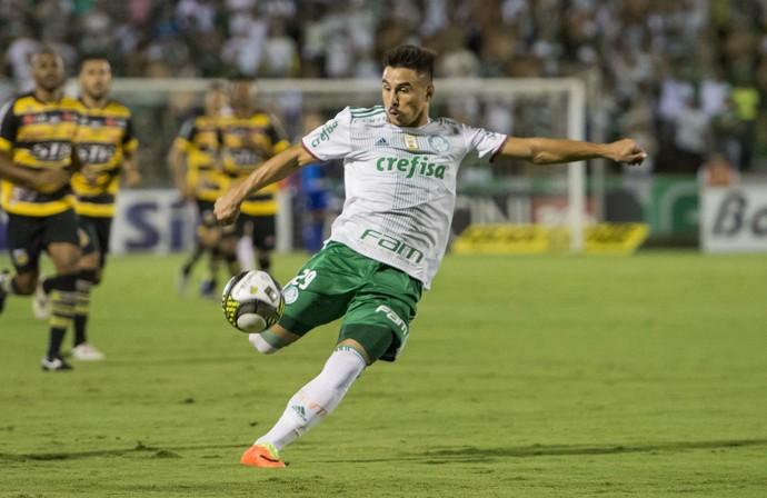 Willian; Novorizontino x Palmeiras (Foto: Estadão Conteúdo)