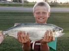 Menino bate recorde mundial ao fisgar peixe 'goldeye' de 1,9 quilo