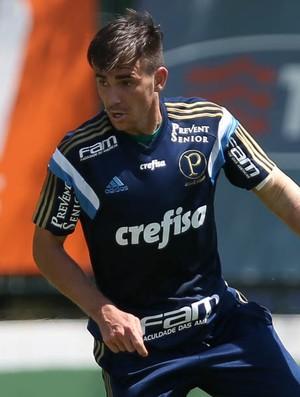 Mouche Palmeiras (Foto: Cesar Greco / Ag. Palmeiras / Divulgação)