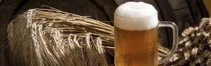 Entenda como as mulheres se tornaram deusas da cerveja (Shutterstock)