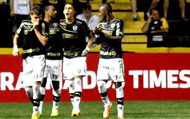 Octavio gol Botafogo contra Criciúma (Foto: Fernando Ribeiro / Futura Press)