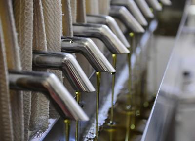 Cooxupé inicia produção de óleo de café para indústria cosmética - Globo Rural