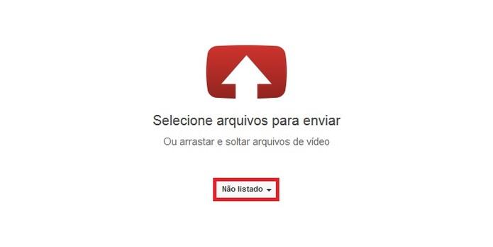 Altere a configuração de privacidade do vídeo antes de publicar (Foto: Reprodução/Carol Danelli)