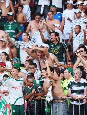 Torcida do Palmeiras Araraquara (Foto: Marcos Ribolli / Globoesporte.com)