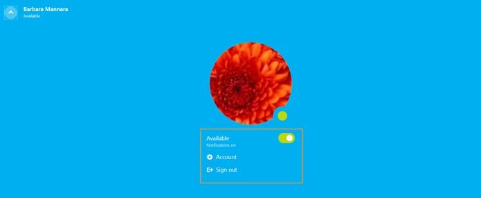 Mais ferramentas na aba do topo do Skype Web (Foto: Reprodução/Barbara Mannara)