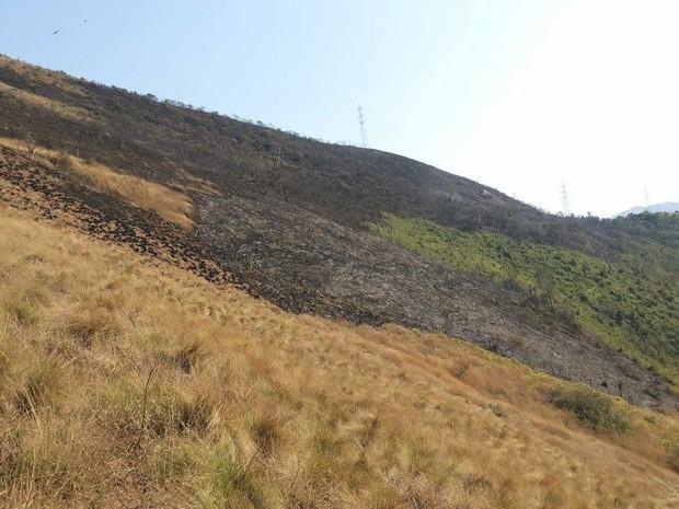 Cerca de 10 mil metros quadrados foram destruídos pelo incêndio (Foto: Andressa Canejo / G1)