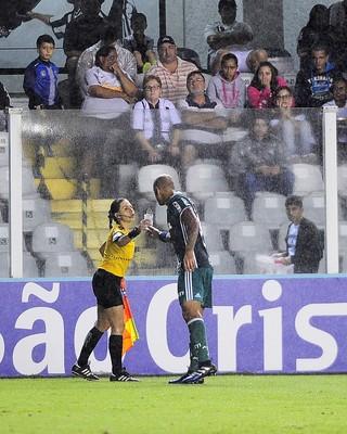 Santos x Palmeiras (Foto: Marcos Ribolli)