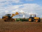 Plantio de soja na Argentina chega a 7,2% dos 20,6 milhões de hectares