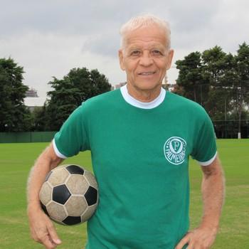 Palmeiras centenário - Ademir da Guia (Foto: Sergio Gandolphi)