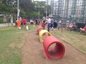 Os moradores aprovaram a praça para os animais (Foto: Rafael Monteiro de Barros/ A Gazeta)