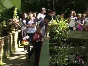Parque Municipal de Maceió  (Foto: Reprodução/TV Gazeta)