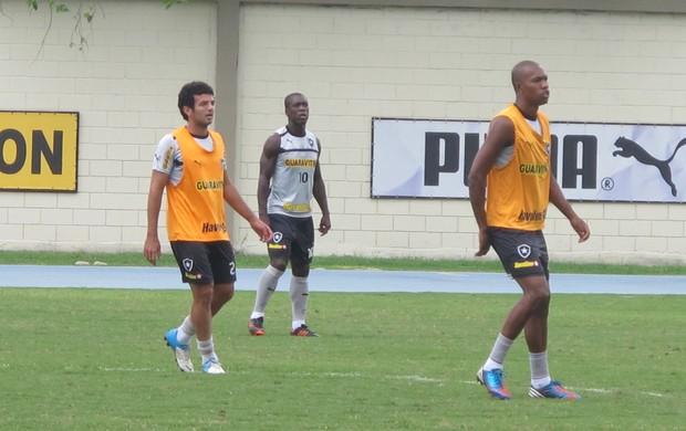 botafogo treino (Foto: Raphael Marinho/Globoesporte.com)
