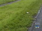 Campanha conscientiza motoristas dos riscos de jogar lixo em rodovias