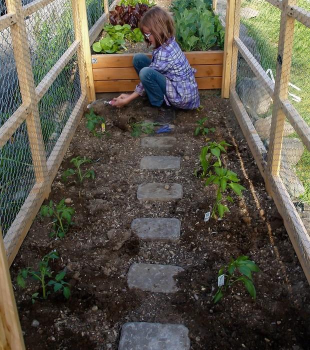 Cerca de 100 quilos de comida devem sair da horta de Hailey neste ano (Foto: Reprodução/Facebook)