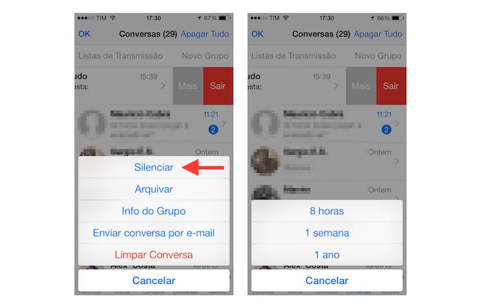Silenciando as notificações de um grupo do WhatsApp no iOS (Foto: Reprodução/Marvin Costa) (Foto: Silenciando as notificações de um grupo do WhatsApp no iOS (Foto: Reprodução/Marvin Costa))