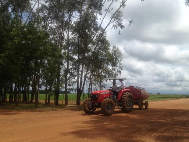Agricultores se preparam para colheita da soja, em Pedro Afonso (Foto: Jesana de Jesus/G1)