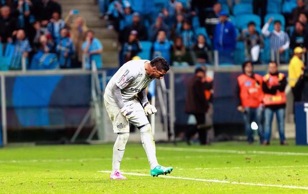 Aranha no jogo Santos e Grêmio (Foto: Jeferson Guareze / Futura Press)