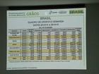 Brasil deverá colher 201 milhões de toneladas de grãos em 2015, diz IBGE