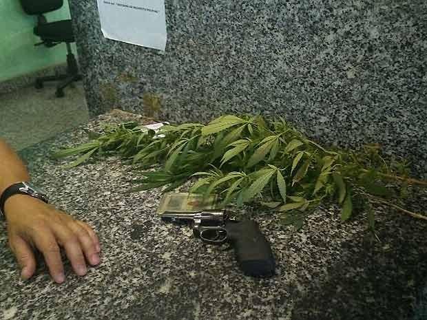 Pés de maconha e revólver encontrado em condomínio no Itapoã, no Distrito Federal (Foto: Polícia Civil/Divulgação)