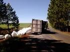 Caminhão tomba e deixa trânsito em meia pista na ERS-463 no RS
