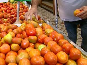 Tomate foi um dos produtos que tiveram maior aumento de preços nos dois primeiros meses do ano (Foto: Reprodução/EPTV)