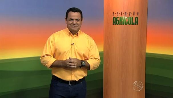 Cleverton Macedo, apresentador do Estação Agrícola. (Foto: Divulgação / TV Sergipe)