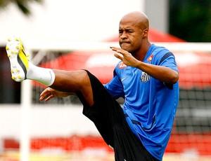 Marcos Assunção no treino do Santos (Foto: Ricardo Saibun / Divulgação Santos FC)