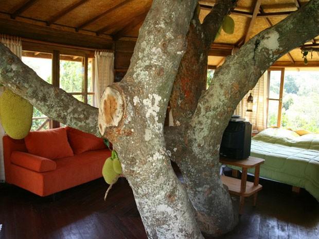 Casa da Árvore, no Vale do Capão, Bahia (Foto: Divulgação/Lendas do Capão)