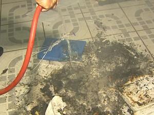 Documentos de escola estadual foram queimados em São Carlos (Foto: Marlon Tavoni/ EPTV)
