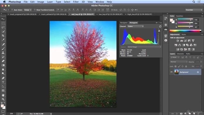 Adobe Photoshop (Foto: Divulgação/Adobe)