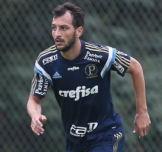 28644c6374411 Edu Dracena será submetido a exames nesta quarta (Foto  Cesar Greco Ag  Palmeiras Divulgação)