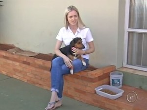 Funcionária de empresa deixa todos os dias ração e água para cães de rua (Foto: Reprodução/TV TEM)