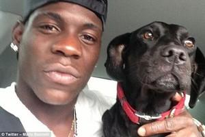 Balotelli é reconhecidamente um amante de cachorros (Foto: Reprodução/ Twitter  )