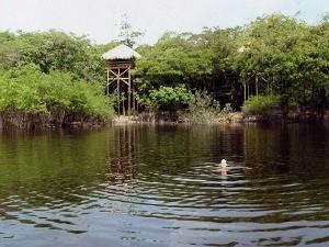 Juma Amazon Lodge está localizada a 100 km a sudeste de Manaus (Foto: Girlene Medeiros / Do G1 AM)