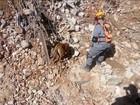Bombeiros de SP encontram mais fragmentos de ossos nos escombros