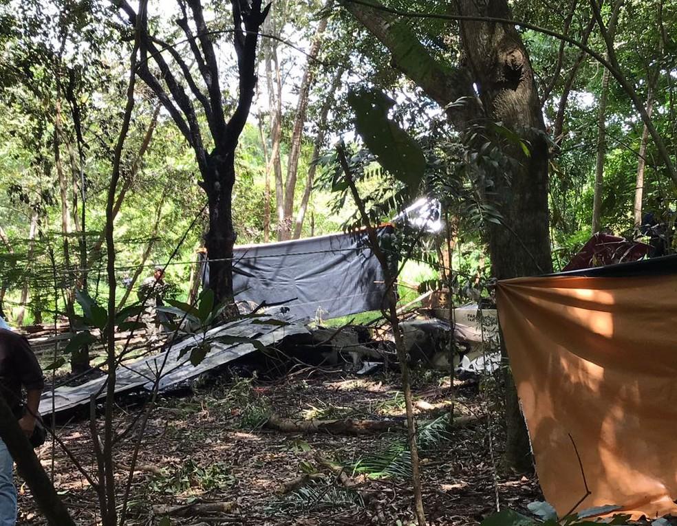 Avião caiu em região de mata no final da pista de pouso (Foto: Inaê Brandão/G1 RR)